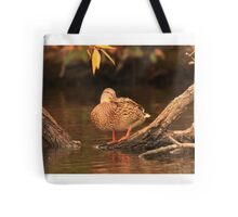 Lake Okauchee Mallard Tote Bag