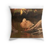 Lake Okauchee Mallard Throw Pillow
