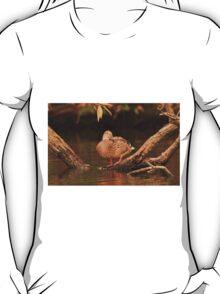 Lake Okauchee Mallard T-Shirt