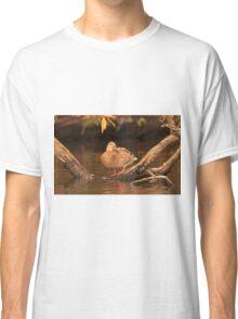 Lake Okauchee Mallard Classic T-Shirt