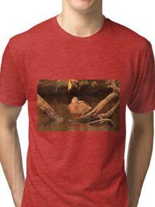 Lake Okauchee Mallard Tri-blend T-Shirt