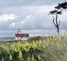 Point Wilson Lighthouse by Koala