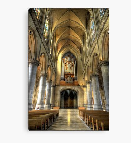 Linz Cathedral Canvas Print