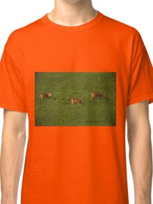 Deer in Bean Field Classic T-Shirt