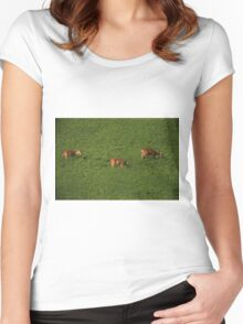 Deer in Bean Field Women's Fitted Scoop T-Shirt