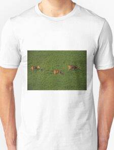 Deer in Bean Field T-Shirt