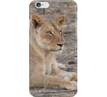 Lioness in winter  iPhone Case/Skin
