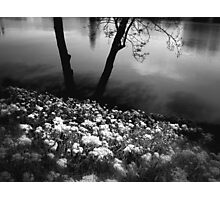 { by the river } Photographic Print