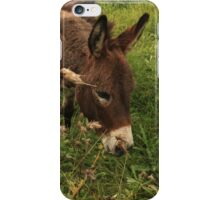 Hot Wheezing Donkey iPhone Case/Skin