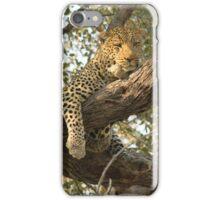 Cat's Cradle iPhone Case/Skin