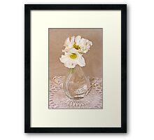 Bottled Begonia Flowers  Framed Print