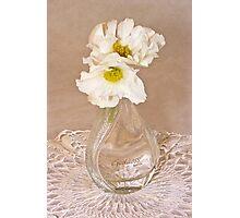 Bottled Begonia Flowers  Photographic Print
