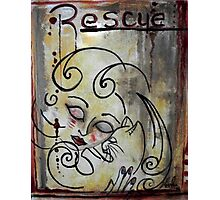 Cat Rescue Adoption Advocacy Folk Art Loralai Photographic Print