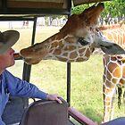 Giraffe Laughs Last by tableau