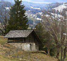 An Old, Wooden Chalet. by EdgeOfReality