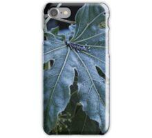 Frosty, Fabulous Leaf iPhone Case/Skin