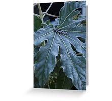 Frosty, Fabulous Leaf Greeting Card