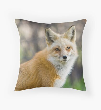 Red Fox Portrait Throw Pillow