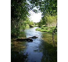 Sunny Day Cool Stream Photographic Print