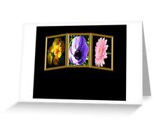 3 frames Greeting Card