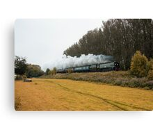 Tangmere at Whiteball  Canvas Print