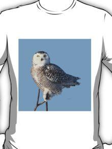 Balancing Talent T-Shirt