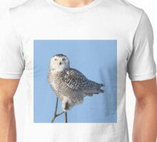 Balancing Talent Unisex T-Shirt