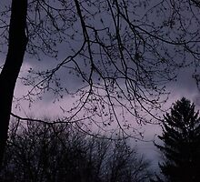 Mysterious Night Sky. by Holly Schimpf