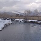 WYOMING WINTER THAW by Leigh Karchner