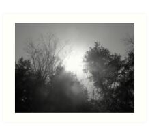 Shades of Gray Art Print