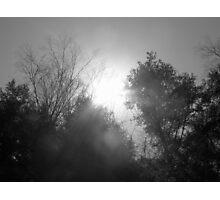 Shades of Gray Photographic Print