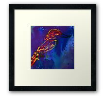 Colourful Bird Framed Print