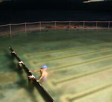 Life Aquatic by Chris Jallard
