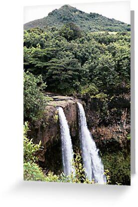 Wailua Falls, from the top, Kauai, HI by rmenaker