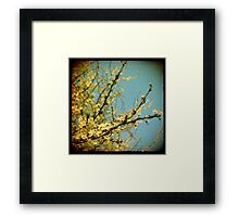golden viewfinder  Framed Print