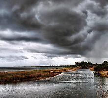Watching the rain... by Nicole Goggins