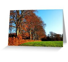 On the edge of the autumn forest Greeting Card
