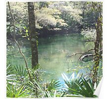 Blue Springs Park Photo Poster