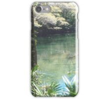 Blue Springs Park Photo iPhone Case/Skin