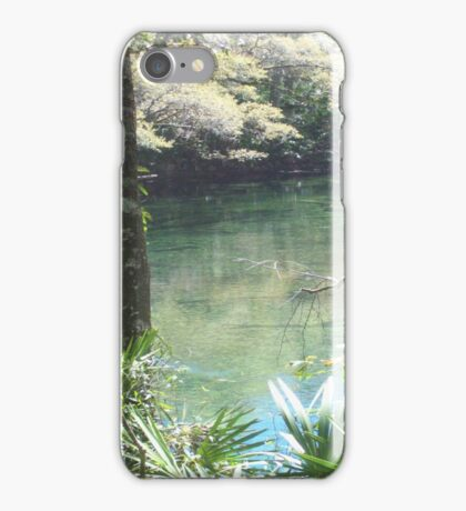 Blue Springs Park Photo iPhone Case/Skin
