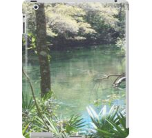 Blue Springs Park Photo iPad Case/Skin