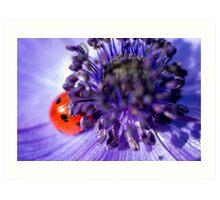 Ladybird having a snooze Art Print