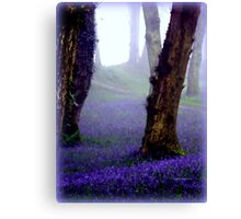 Bluebells in the Mist Canvas Print