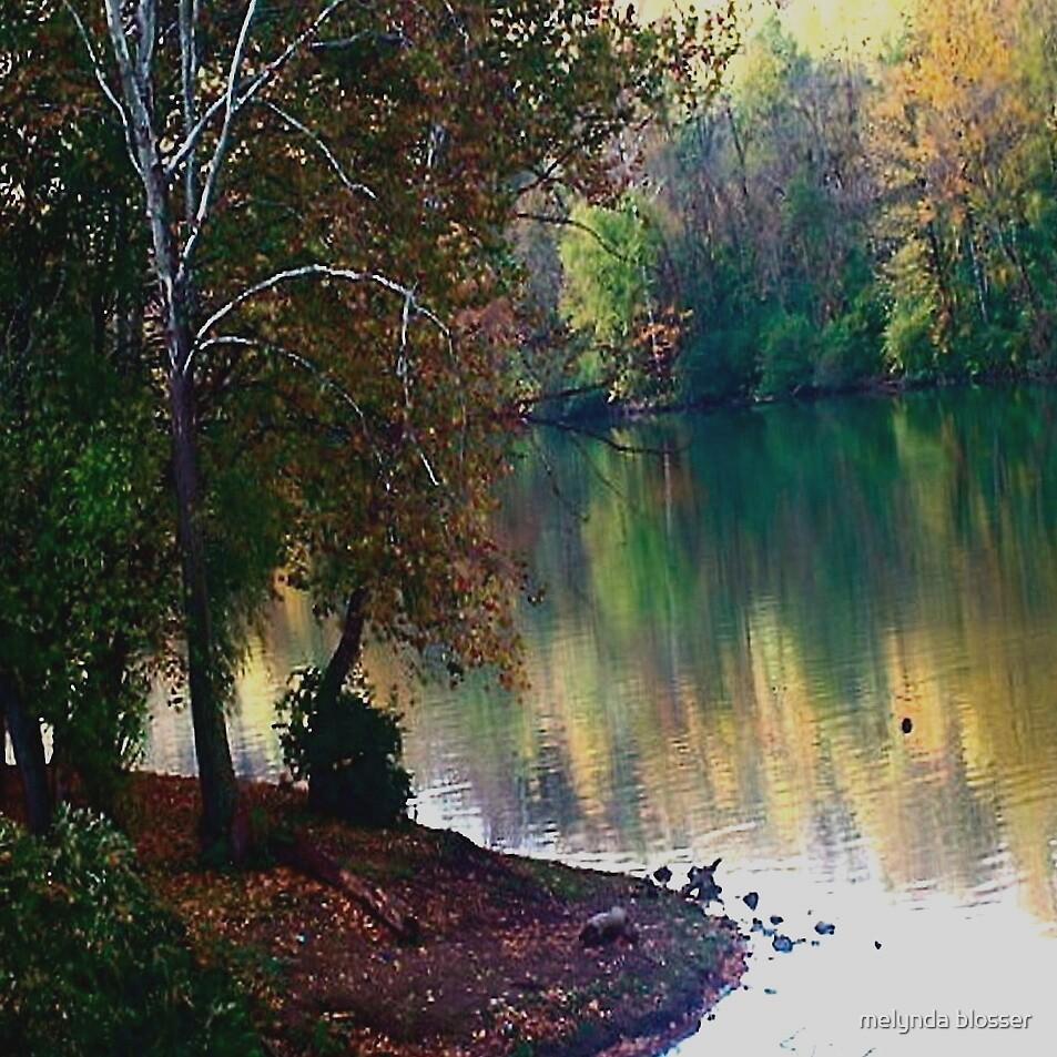 quiet place by melynda blosser