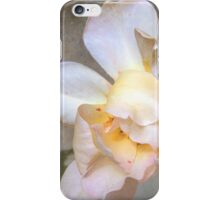 Aged Beauty is a Rose iPhone Case/Skin