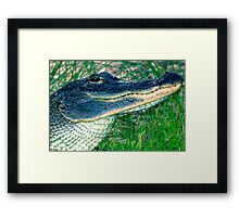 SMILE, The worst is yet to come! Framed Print