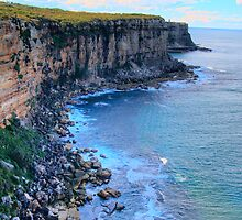 """Awe Revisited"" - North Head - Sydney Harbour National Park - The HDR Series, Sydney Australia by Philip Johnson"