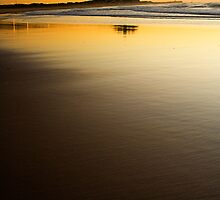 Nobbys Sunrise Portrait by Heath Carney