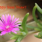 Happy New Year 2015! by Maree  Clarkson