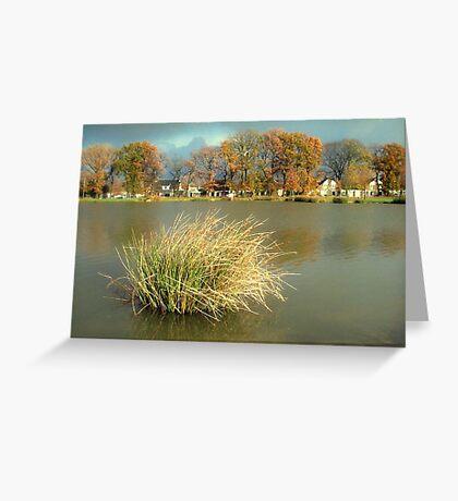 November Greeting Card